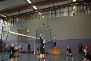 volleyball-kreisentscheid-2016-17-03