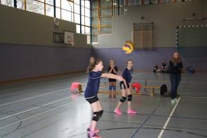 volleyball-kreisentscheid-2016-17-07