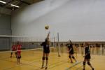Volleyball-Landesmeister 07