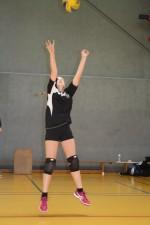 Volleyball-Landesmeister 08