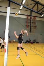 Volleyball-Landesmeister 09