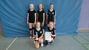 Volleyballturnier 2017 - 03