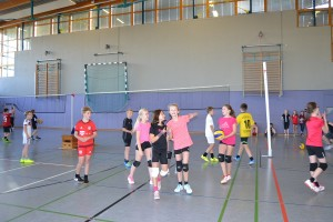 Volleyballturnier 2017 - 08