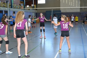 Volleyballturnier 2017 - 09