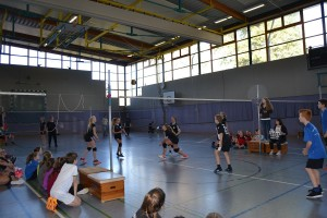 Volleyballturnier 2017 - 11