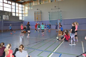 Volleyballturnier 2017 - 12