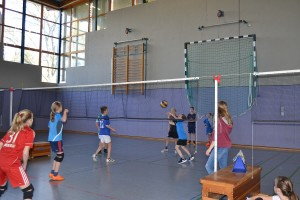 Volleyballturnier 2017 - 13