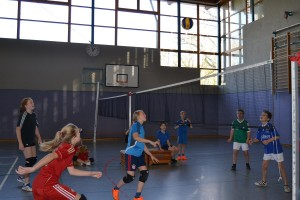 Volleyballturnier 2017 - 14